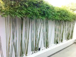par vue de jardin idees jardinieres fleuries 3 idaces pour remplacer sa clature de
