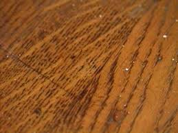 How To Clean Paint From Laminate Floors How To Remove Burn Marks On A Hardwood Floor Hgtv