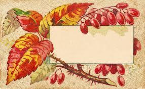 catnipstudiocollage free vintage clip autumn leaves