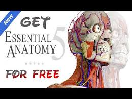 essential anatomy 3 apk how to get essential anatomy 5 for free mac 2017