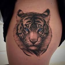 collection of 25 tiger for back shoulder