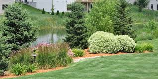 Cheap Backyard Makeovers by Garden Design Garden Design With Landscaping Plants Choosing