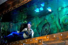 dive bar u0027s head mermaid rachel smith i am a mermaid