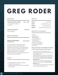 Resume Samples Pictures by Best Cv Examples 2017 To Try Resume Examples 2017