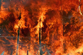 Wildfire Scientific Definition by Wisdom Quarterly American Buddhist Journal Climate Chaos Forest