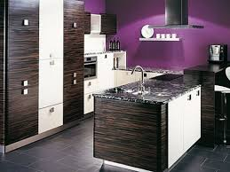 purple canisters for the kitchen gray and purple kitchen purple canisters purple kitchen walls