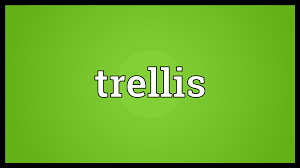 trellis meaning youtube