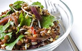 cuisiner les lentilles vertes salade de lentilles vertes au plemousse menthe et citron vert