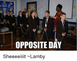Sheeeeiiiit Meme - opposite day sheeeeiiiit lamby meme on me me
