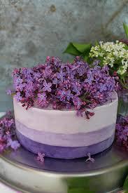 wedding cake recipes berry 189 best frozen cakes images on frozen cake icecream