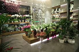 florist shop demacian bouquet flower shop
