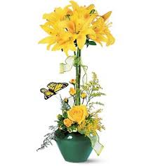 Laurel Topiary - buy flowers u0026 gifts from your local florist in laurel md