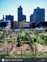 Urban Gardening New York New York In The 80s Stock Photos U0026 New York In The 80s Stock