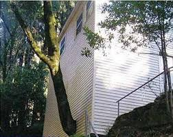 top 40 funniest construction mistakes
