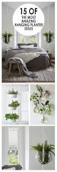 Wall Planters Indoor by Best 25 Indoor Hanging Planters Ideas On Pinterest Hung Vs