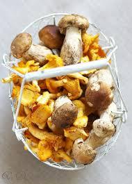 cuisiner des cepes frais quiche aux cèpes girolles et morilles avec pâte brisée au fromage
