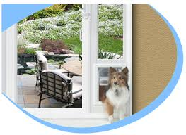 Dog Patio Patio Automatic Cat And Dog Doors With Superior Pet Door Design
