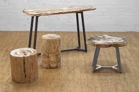 petrified wood stump u2013 from the source