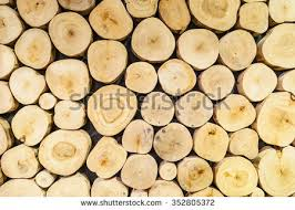 log wall stock images royalty free images vectors