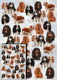cavalier king charles spaniel gift wrapping paper with small