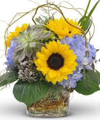 florist fort worth sunflowers and succulents flower delivery fort worth gordon