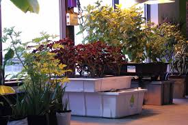 indoor gardens best grow shop in ohio hydroponics grow