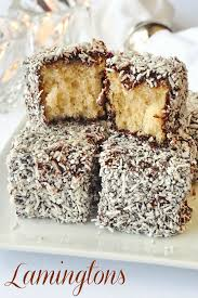 chocolate coconut cake squares a k a lamingtons recipe