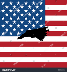 North Carolina Flag Shape State North Carolina American Flag Stock Illustration