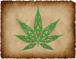 pot leaf designs pesquisa ideas