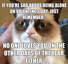 Funny Memes For Valentines Day - animal memes valentine s day grumpy cat funny memes