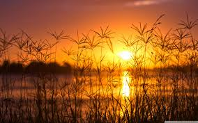 sunset light summer hd desktop wallpaper for 4k ultra hd tv