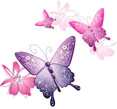 transparent butterfly decorative clipart gallery yopriceville