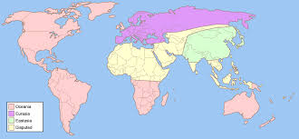 Code Geass World Map by Fictional Lands Concordances And Characters Fandom Powered By