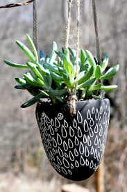 creative planters for spring plants feng shui garden the tao