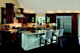 haas cabinet co stafford door style full overlay wood species