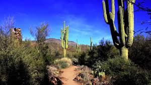 Arizona scenery images Phoenix az scenery jpg