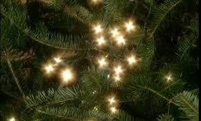 video good thing beautiful christmas tree lights martha stewart