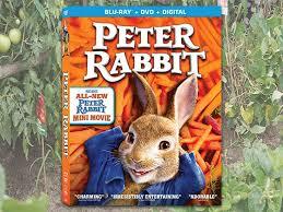 rabbit dvd win a copy of rabbit on dvd sweepon
