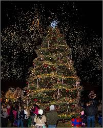 christmas tree lighting near me holiday tree lighting elk grove village