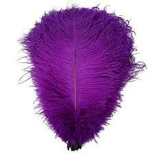 purple feather purple feather co uk