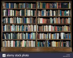 Unfinished Bookshelves by Bookcase Backboard Tags 52 Fearsome Bookcase Books Images Design