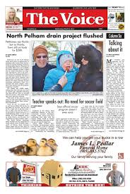 the voice of pelham march 8 2017 by the voice of pelham issuu