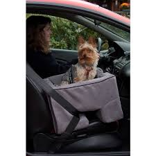 booster seat pet gear large car booster seat free shipping today overstock