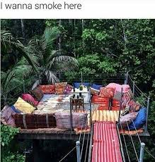 smoking weed in backyard 153 best smokin memes images on pinterest weed weeding and grass