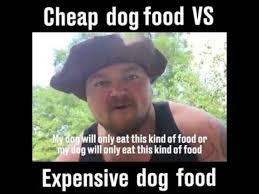 Dog Food Meme - difference in dog foods youtube