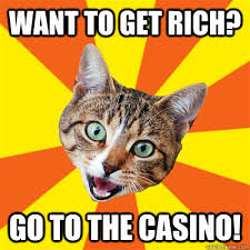 Rich Cat Meme - want to get rich cat meme cat planet cat planet