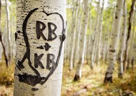initials carved in tree name change information take these easy steps to make it