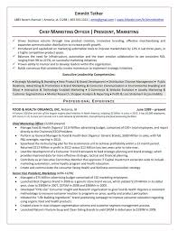 Leadership Resume Template The Top 4 Executive Resume Examples Written By A Professional