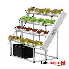 soil less hydroponics system find out more about hydroponic
