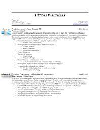 dennis walthers vp sales resume